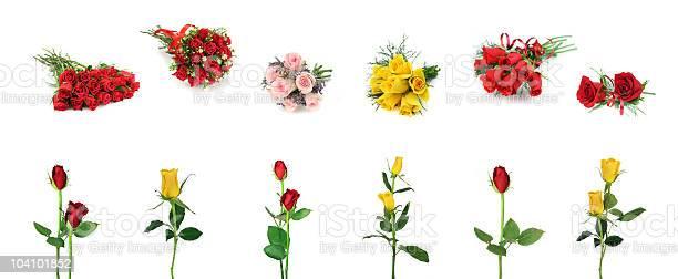 Roses design element collection picture id104101852?b=1&k=6&m=104101852&s=612x612&h=dtbvmwckq4n7fgbs49xa1xjqj7nf1zvg8sird9rio3c=