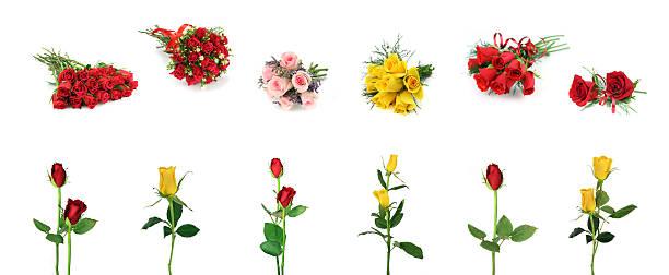 Roses design element collection picture id104101852?b=1&k=6&m=104101852&s=612x612&w=0&h=grghtumy1cjnn bmu2mnprviosfluxvjadymi8ujhvc=