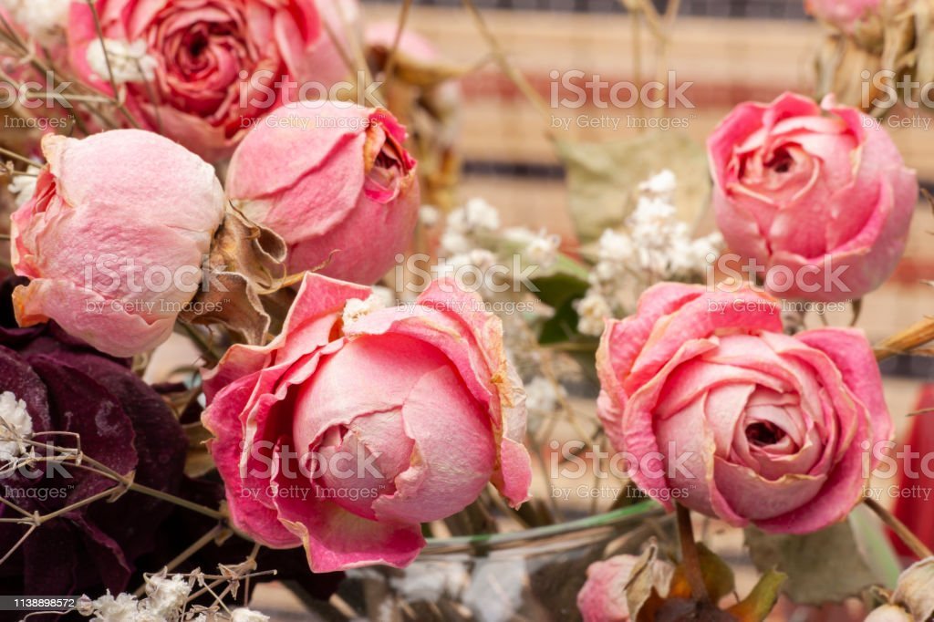 Roses dried flowers Interior decoration Limited depth of field...