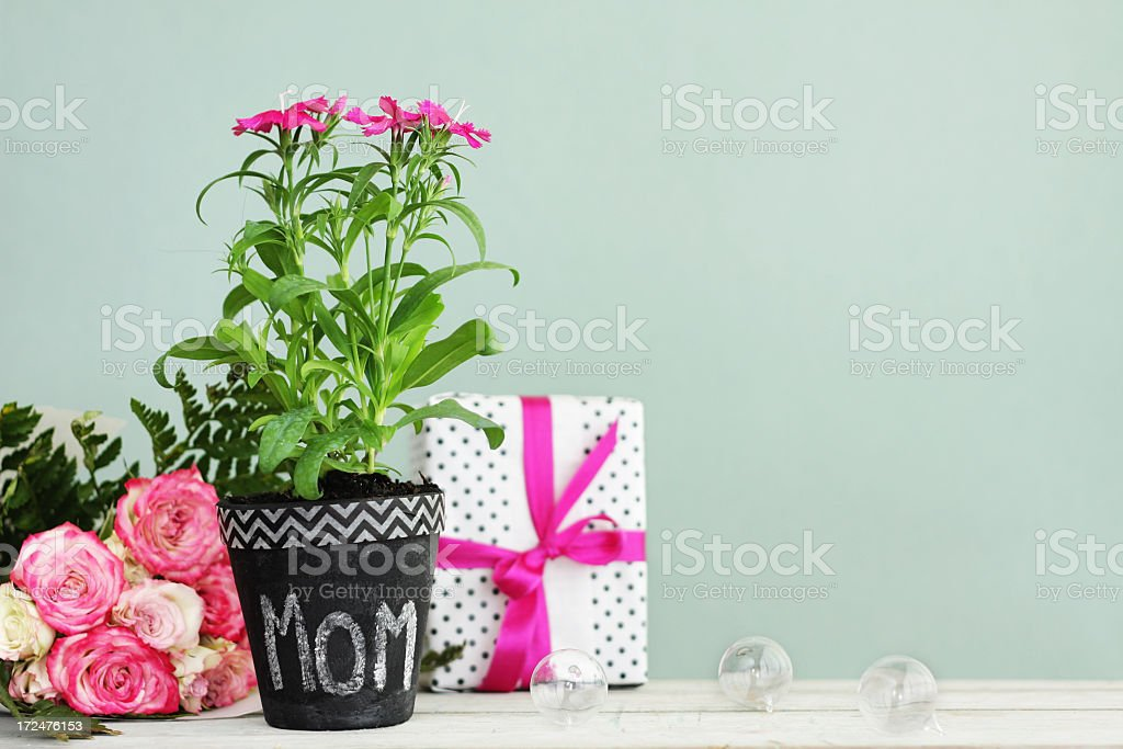 A DSLR photo of a pink flower plant with a \'MOM\' sign together with a...