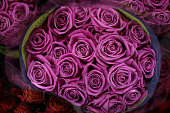 Roses for Valentine's day at market