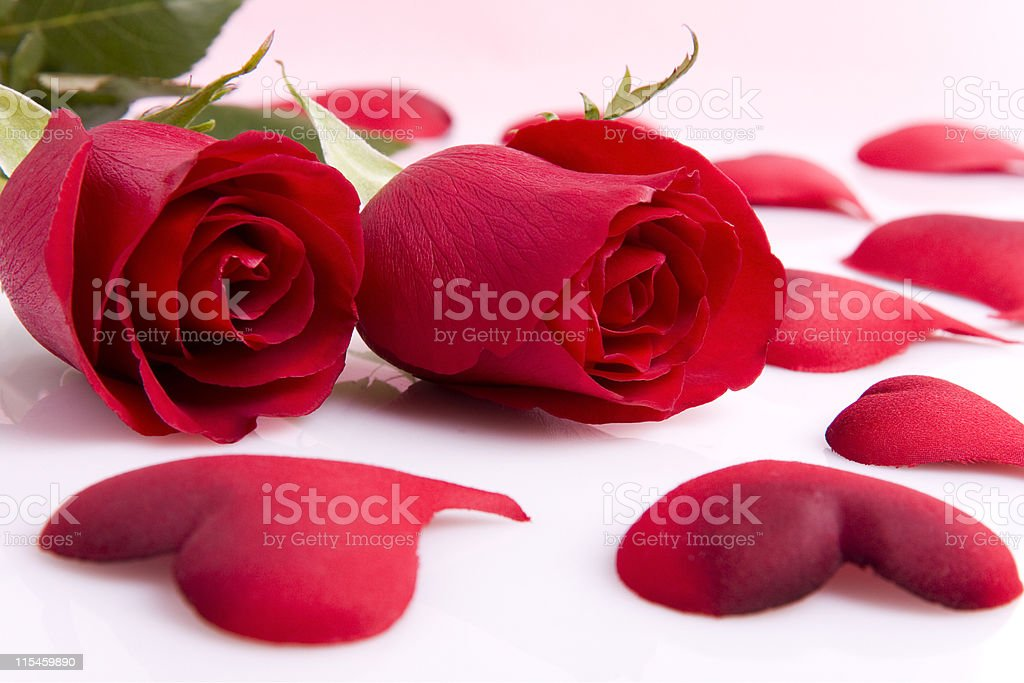 Roses Hearts Stock Photo - Download Image Now - iStock