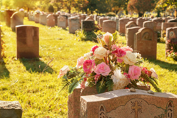roses in a cemetery with headstones - kerkhof stockfoto's en -beelden