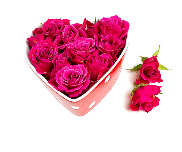 Roses in a heartshaped bowl picture id626512334?b=1&k=6&m=626512334&s=612x612&w=0&h=orxty3vnekem8tatfy3rvt1ikuypk8dva1kzc4nwxbw=