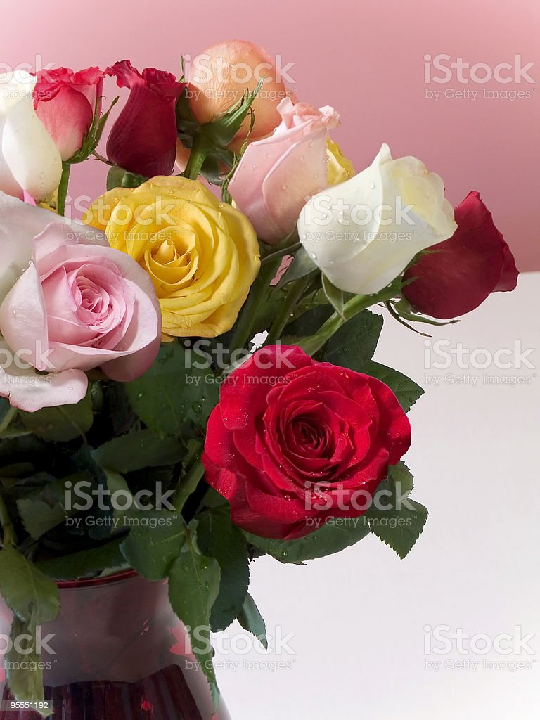 Roses In Vase royalty-free stock photo