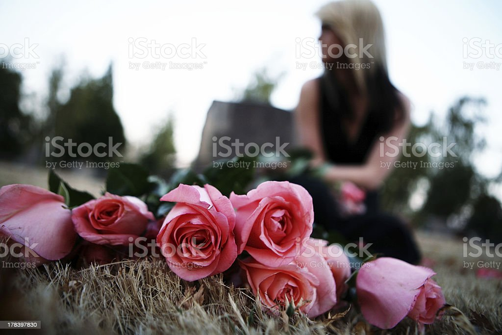 Roses Laid in Cemetery with Bokeh Female royalty-free stock photo