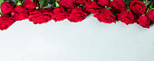 istock Roses on a white conctere background. 1199334112