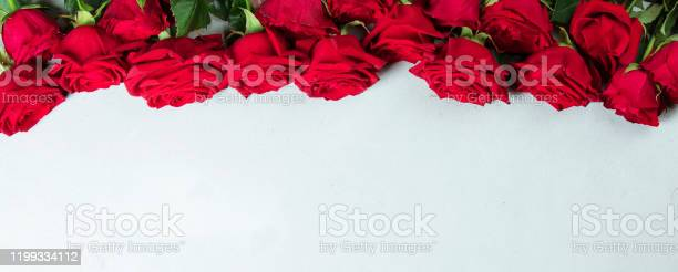 Roses on a white conctere background picture id1199334112?b=1&k=6&m=1199334112&s=612x612&h=6pomrkykm9gutlmqozpeiodcwvniuukc0ujappeyjik=