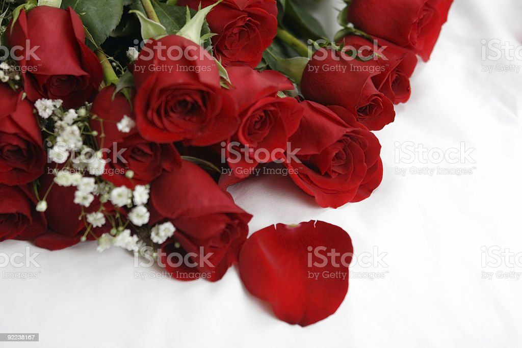 Roses on bed royalty-free stock photo