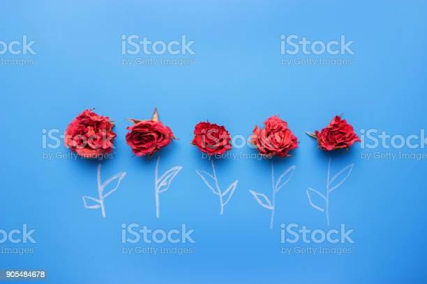 Roses on blue background picture id905484678?b=1&k=6&m=905484678&s=612x612&h=yppmamdinvt4jzdjrzbr6aj yw2kfdatkyplh2ydx8a=