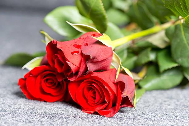 Roses on grave picture id178593801?b=1&k=6&m=178593801&s=612x612&w=0&h=iocrv2mo3bdypgds3tx6tbi kyuvfmkoiscvuvqhuq8=
