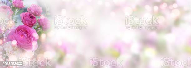 Roses on pastel colored spring background picture id1098293600?b=1&k=6&m=1098293600&s=612x612&h=oo4ajo4fu2isspe67mhpoke tbqp6txplza2b5e4554=