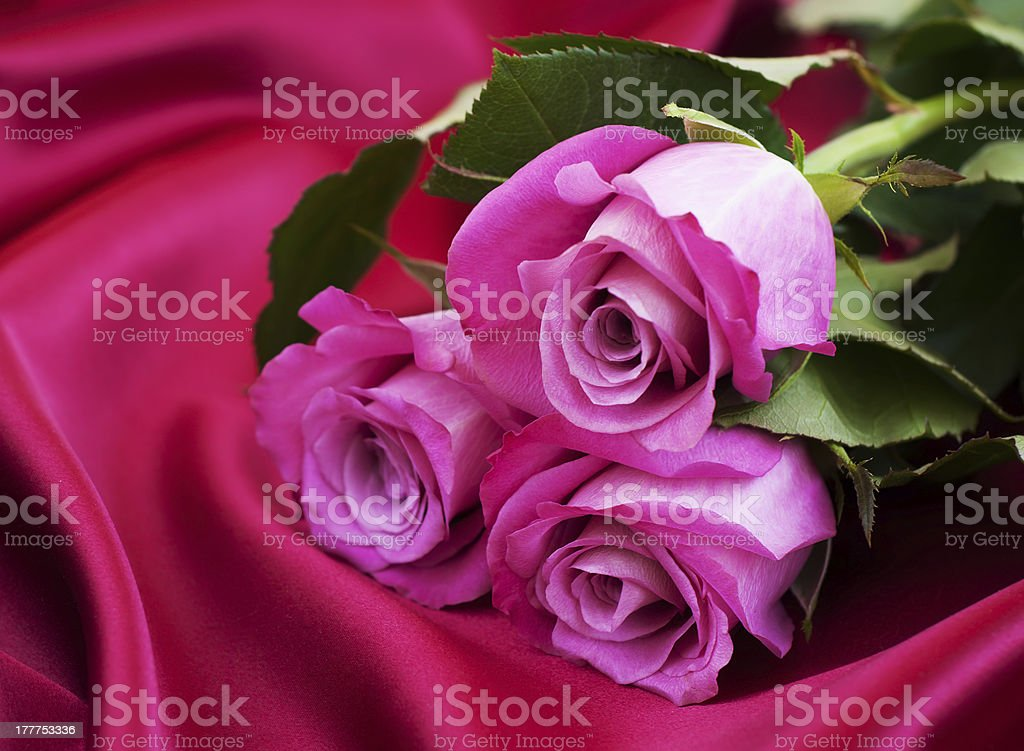 Roses on satin background royalty-free stock photo