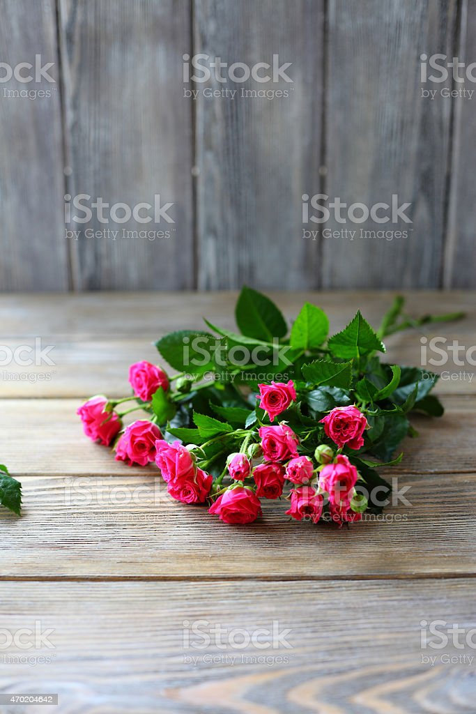 Roses on the boards stock photo