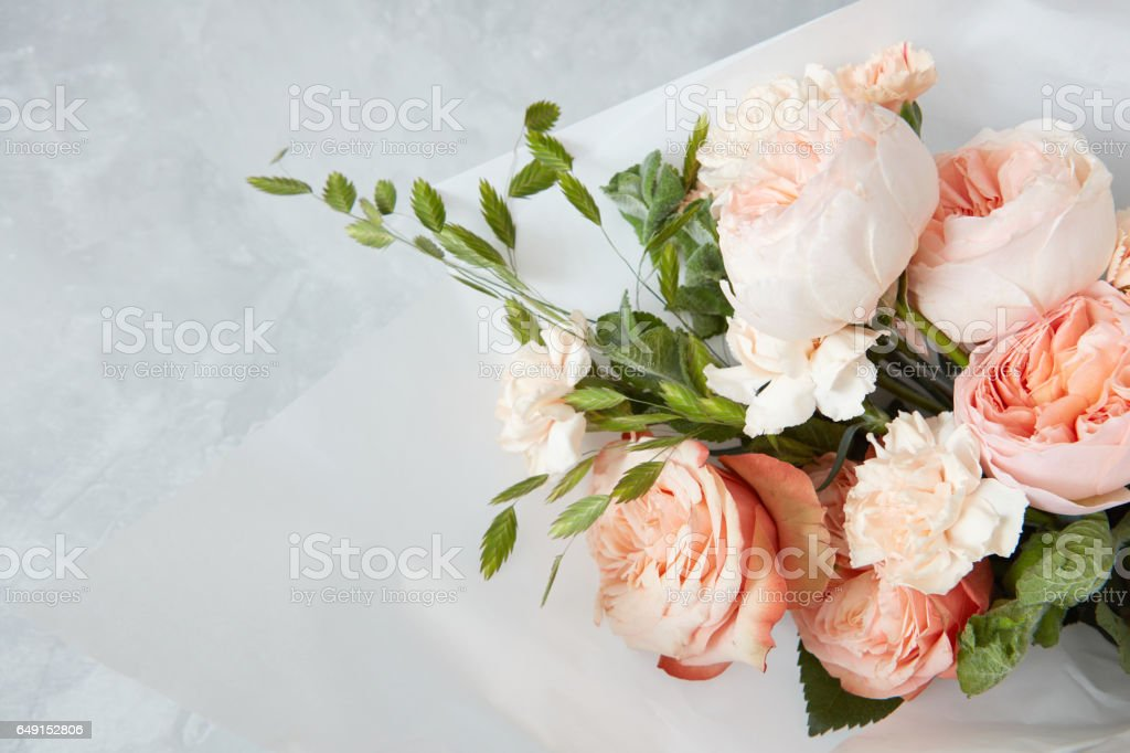 Roses on white background stock photo
