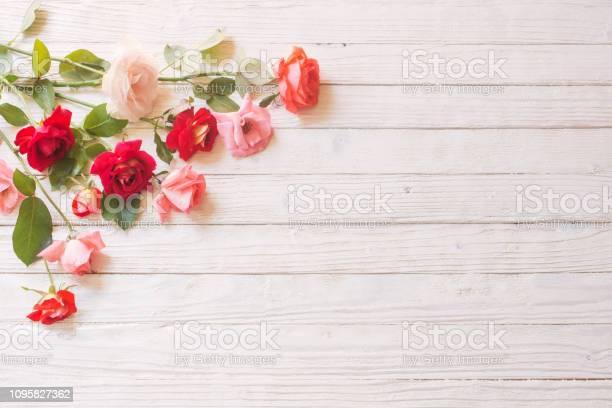 Roses on white wooden background picture id1095827362?b=1&k=6&m=1095827362&s=612x612&h=vd7zrmsl36choqjn4vap8 3xa3uqddbzrkjzh s7a q=