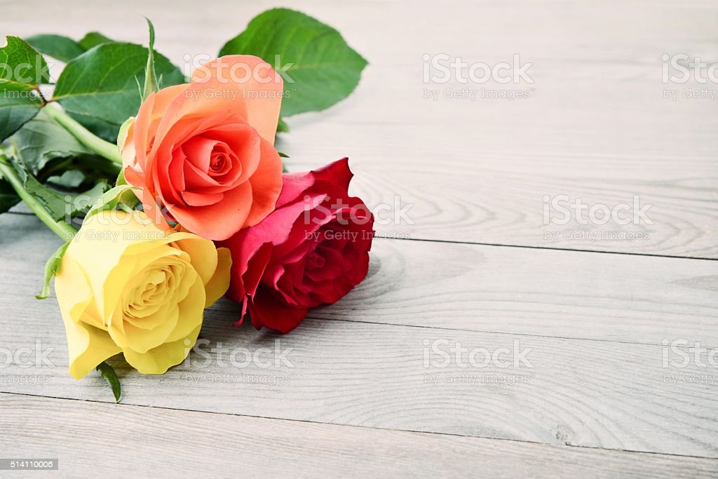 Roses on wooden background. stock photo