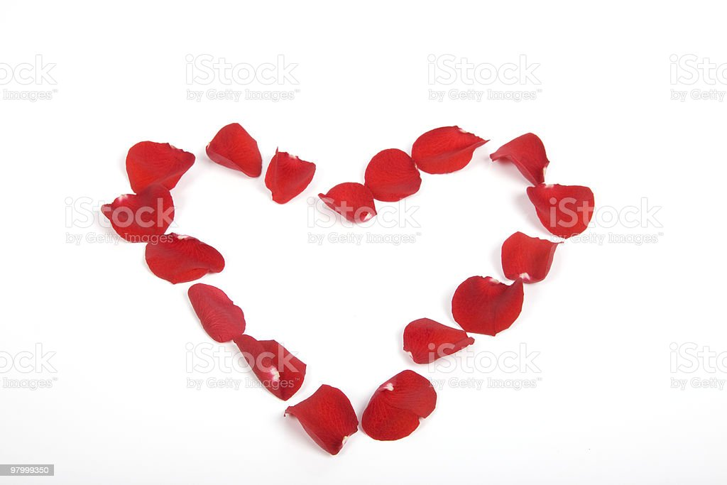 Roses petals royalty-free stock photo