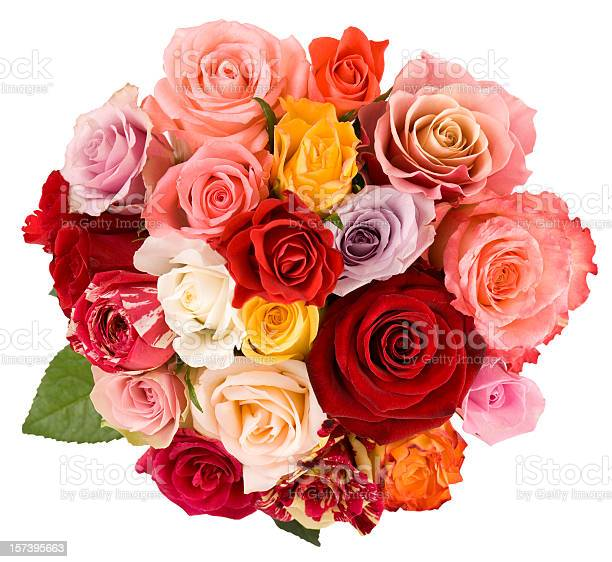 Roses picture id157395663?b=1&k=6&m=157395663&s=612x612&h=ugpkytr7able3y 49igrfk4hadliq1y0h0mtyiqjqse=