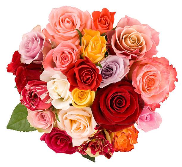 Roses picture id157395663?b=1&k=6&m=157395663&s=612x612&w=0&h=u2iylvwfsavmepacdn1zvptqovj pdv927at4hwazza=