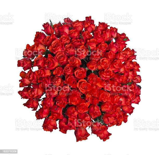 Roses picture id183378306?b=1&k=6&m=183378306&s=612x612&h=6dnj 6dwivbhhao kvxcwrbb85ponm7qtgjhzlyeu g=