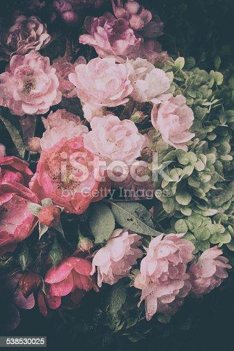 istock Roses 538530025