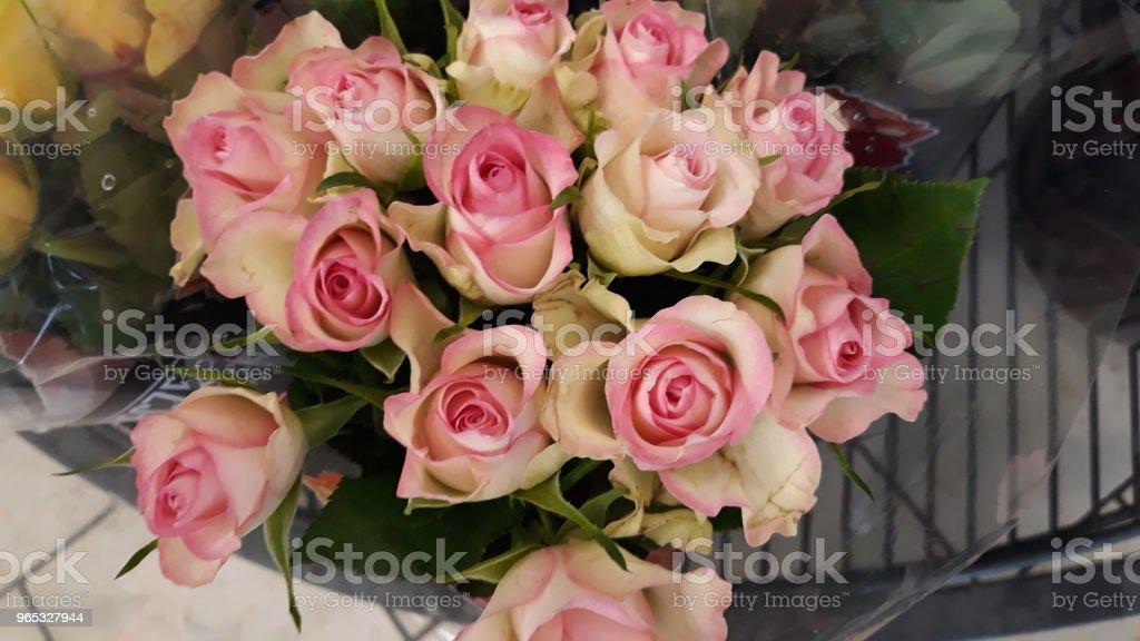 Róże - zdjęcia stockowe i więcej obrazów Bukiet