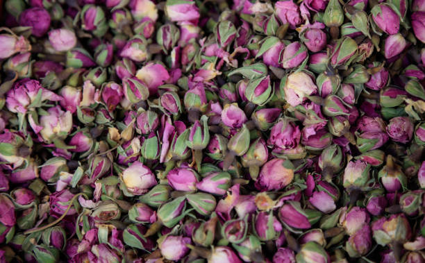 Roses pink dried on heap antioxidant and healthy rosebuds for close picture id1035640110?b=1&k=6&m=1035640110&s=612x612&w=0&h=yrpnrwqbvd7actk028wjibz2wxsrh8 ibc1xfeqkkpm=