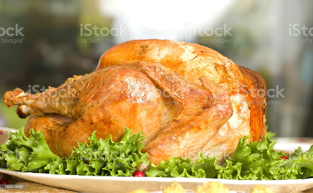 Rosted thanks giving turkey royalty-free stock photo