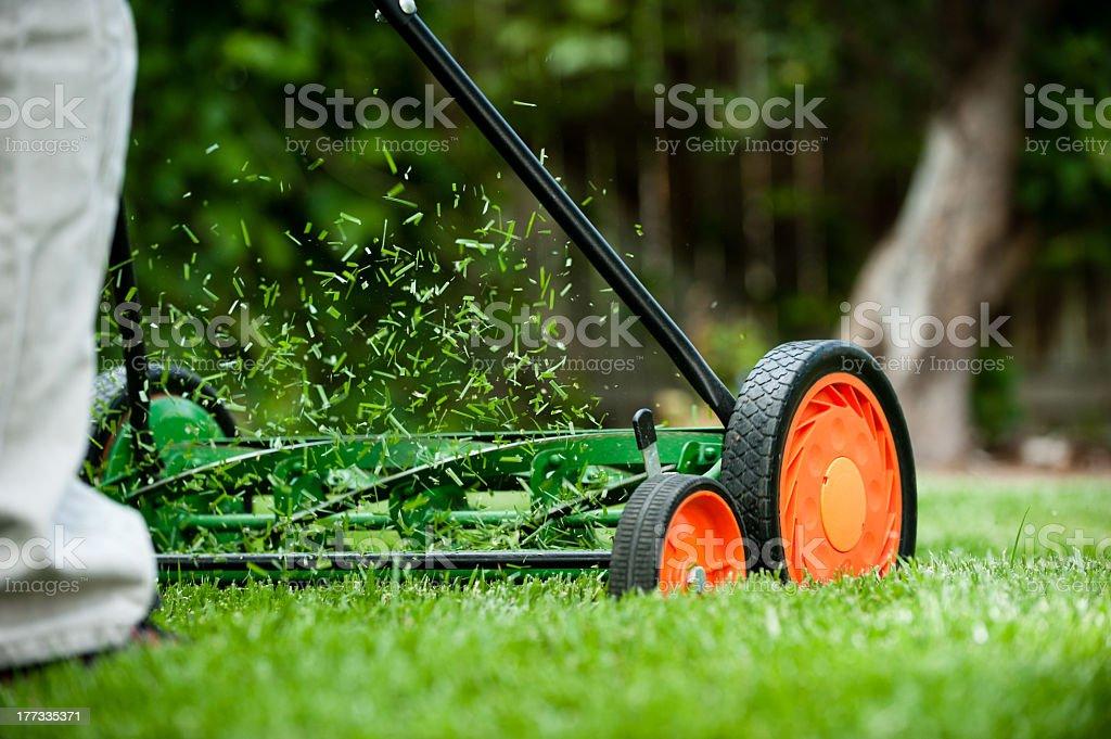 Rotary push mower with orange wheels cutting the grass stock photo