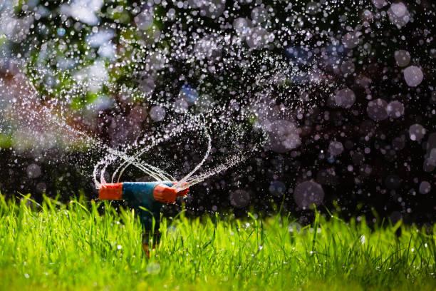 Rotating garden sprinkler watering grass stock photo