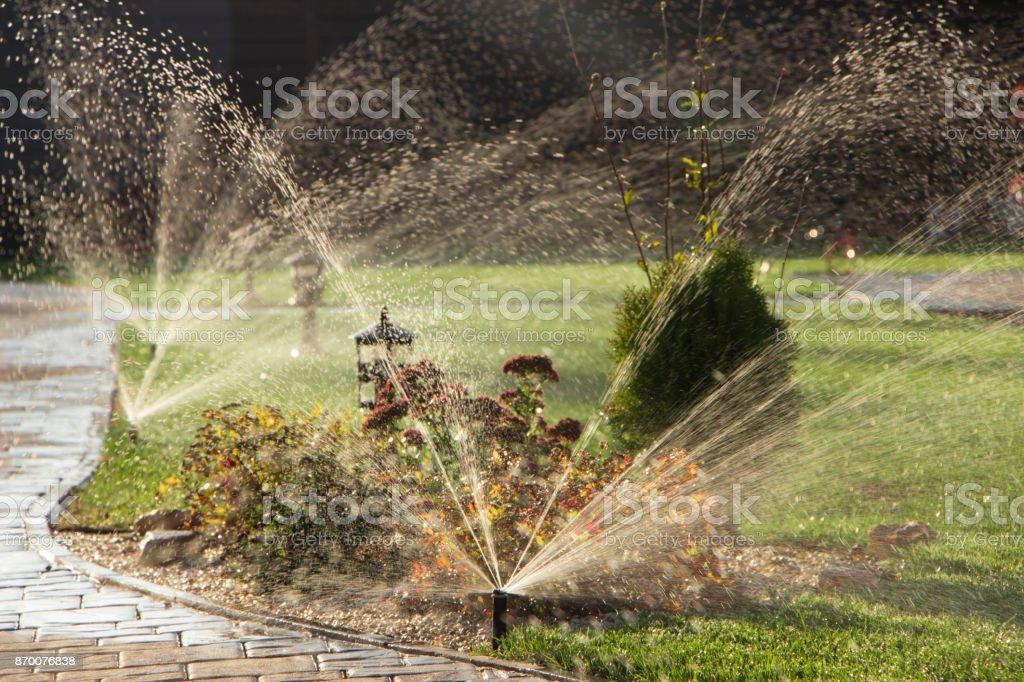 Un arroseur rotatif a vaporiser dans l'arrière-cour - Photo