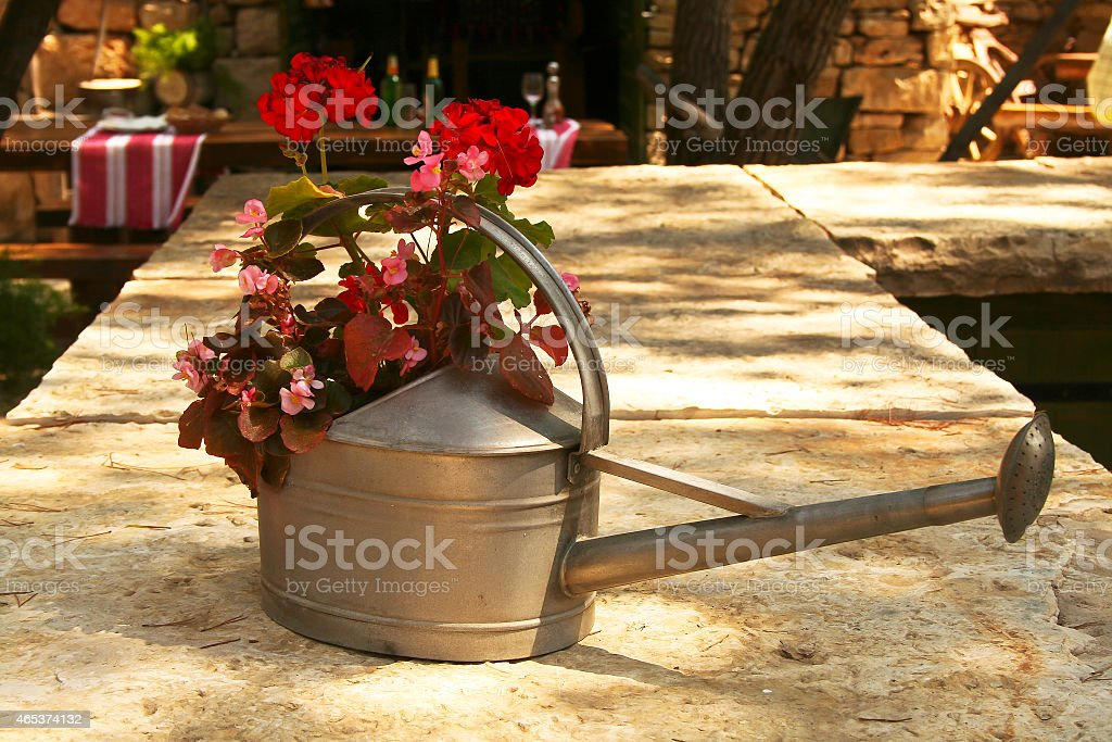 Rote Blumen stock photo