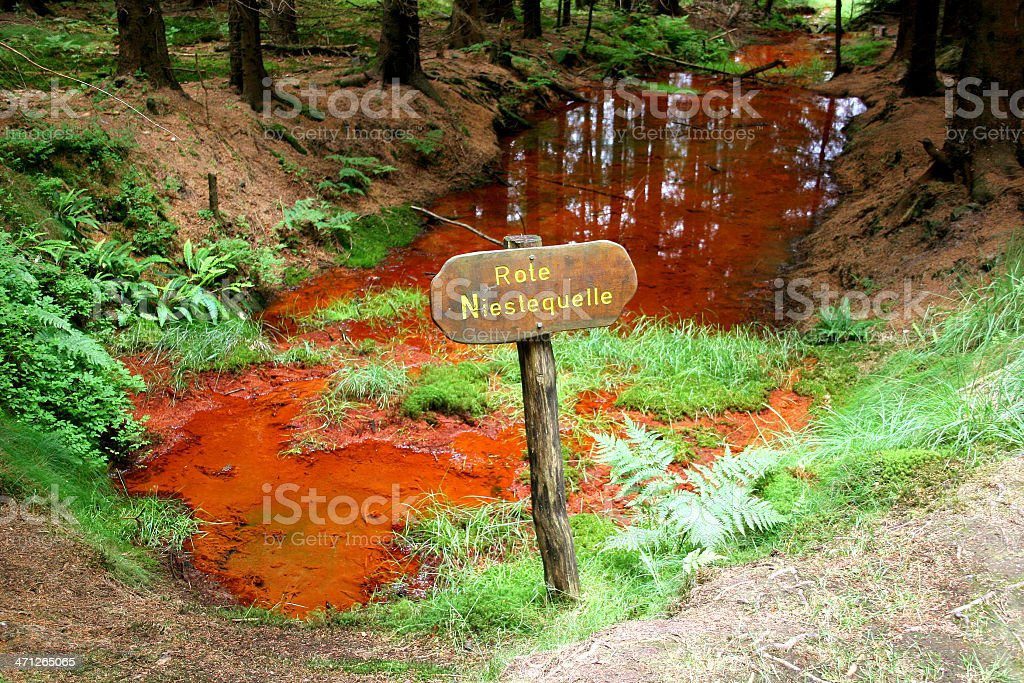 Rote Niestequelle (Kaufunger Wald) stock photo
