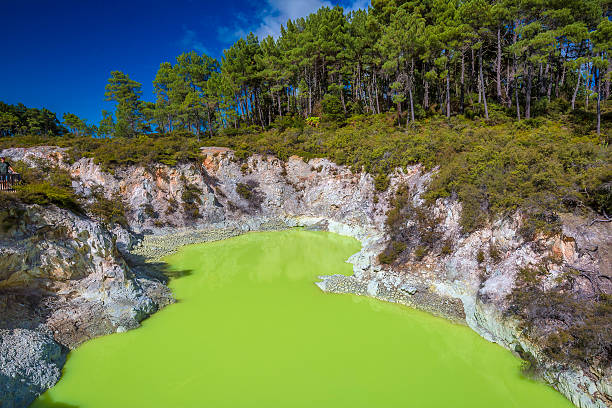 """Rotorua Thermal Wonderland Rotorua has the nickname Sulphur City, because of the hydrogen sulphide emissions, which gives Rotorua a """"rotten eggs"""" smell, as well as rotten-rua combining its legitimate name and the rotten smell prevalent. whakarewarewa stock pictures, royalty-free photos & images"""