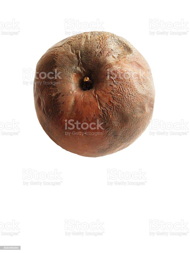 Rotten Apple isolated on white. stock photo