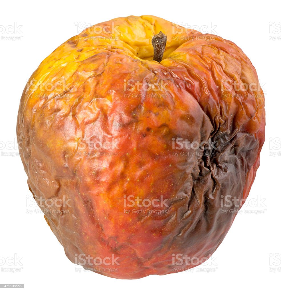 Rotten apple(clipping path) A rotten apple isolated on white background(clipping path included) Apple - Fruit Stock Photo