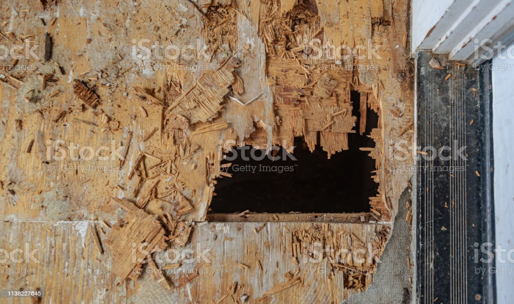 Rotten Deck by doorway stock photo