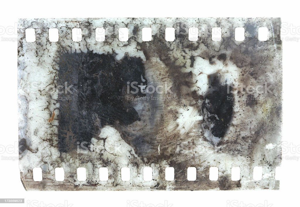 Rotten Film Negative royalty-free stock photo