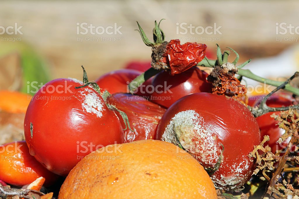 Rotten fruit and vegetables stock photo