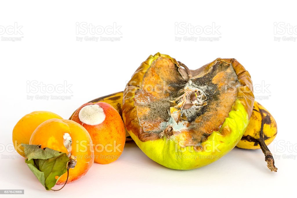 Rotten Fruits on white background , rot fungi ,Composting fruits. stock photo