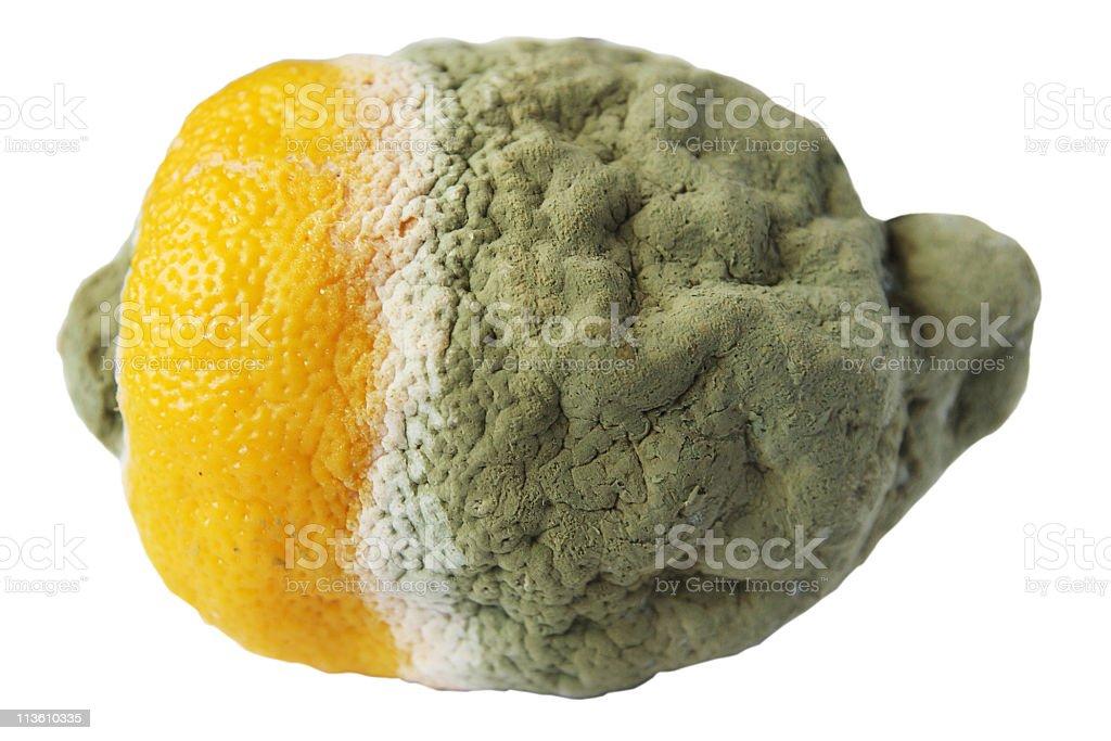 Rotten lemon royalty-free stock photo