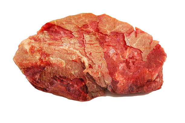 Royalty Free Rotten Meat Pictures, Images and Stock Photos ...