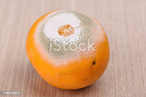 istock Rotten moldy orange on a wooden background. 1169100222