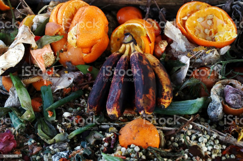 Rotten, old fruit and vegetables. Fruit and vegetable waste on compost stock photo
