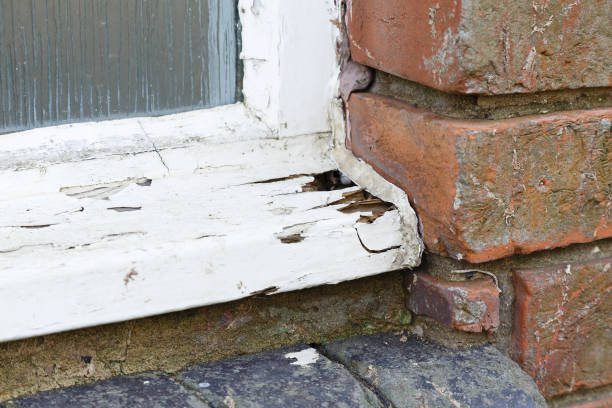 Rotten old wooden window stock photo