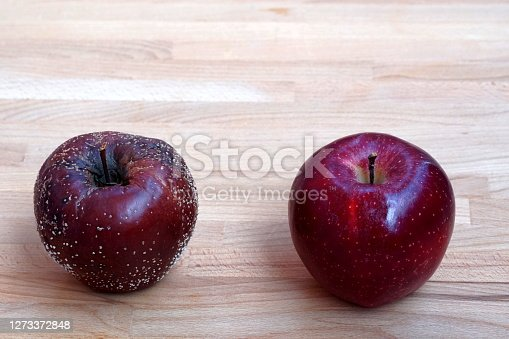 A rotten or decayed apple, Royal Gala, covered with white dots of fungus mould and a good healthy  one  put beside one another as a comparison and contrast. they are put on a wooden plate.