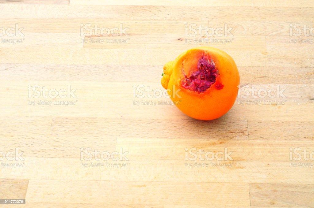 rotten orange stock photo