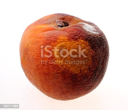 Single rotting peach isolated on white
