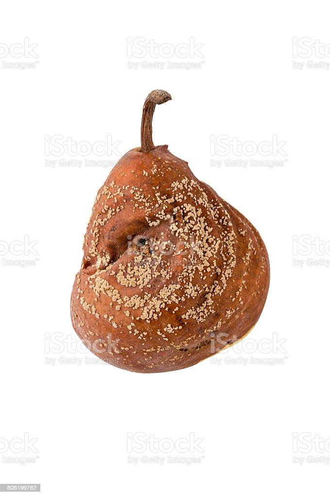 rotten pear isolated closeup stock photo